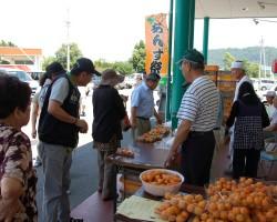 生食杏コーナーの様子
